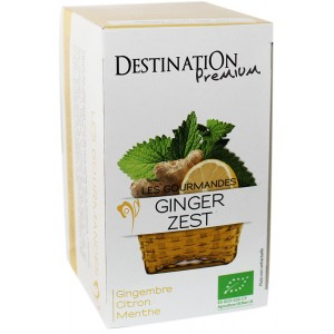 Infusion Gourmande Ginger Zest - 20x1,5g